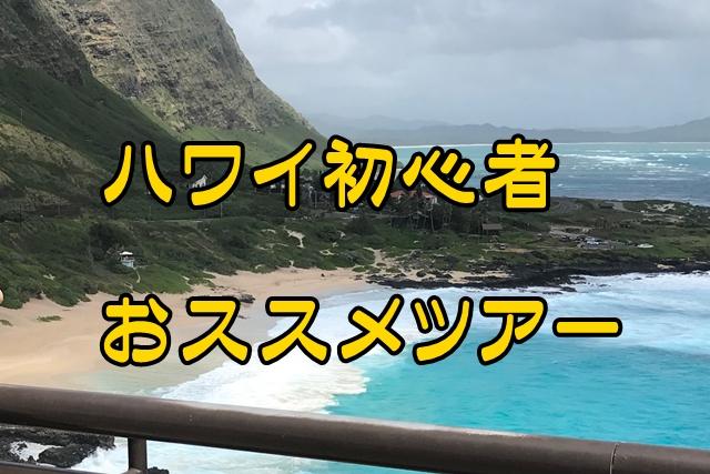 ハワイ初心者が、まず申し込むべきオプショナルツアーのおすすめは?